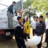 Triển khai thực hiện giao nhận gạo cho học sinh tháng 9,10 học kì I năm học 2104-2105
